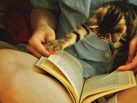 Namore uma garota que lê