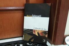 Livro - A morada do ser - Resenha